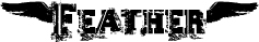 logo_feather