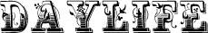 logo_daylife